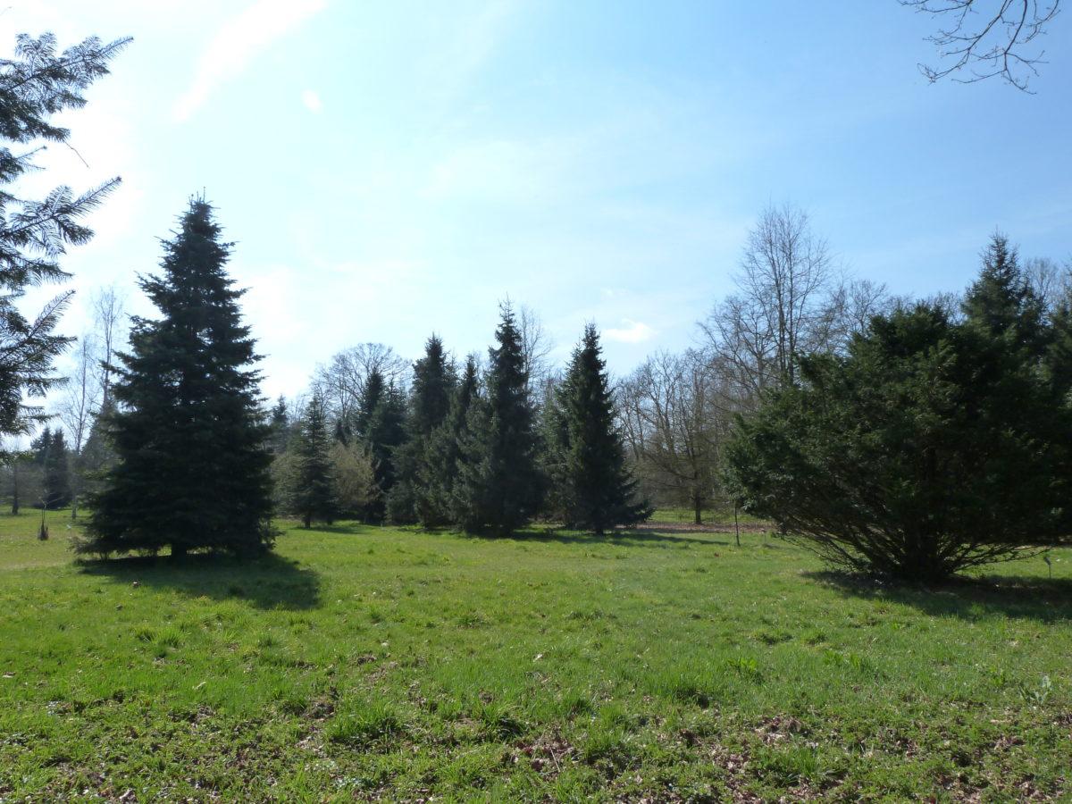 Arboretum de Brumath