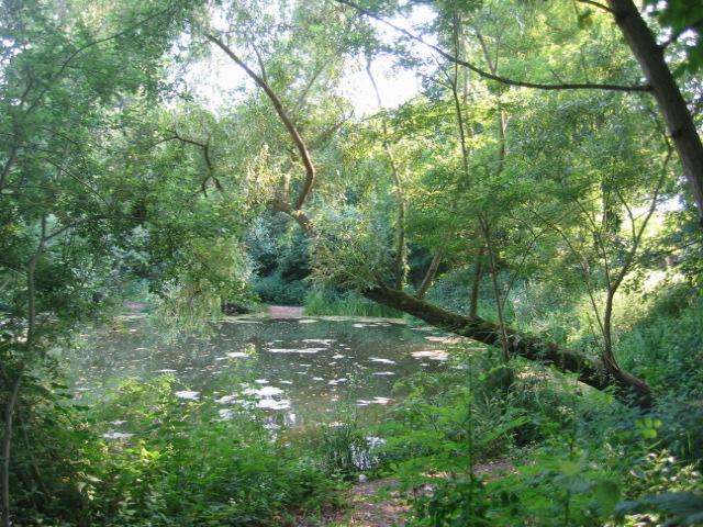 Parc de Stephensfeld