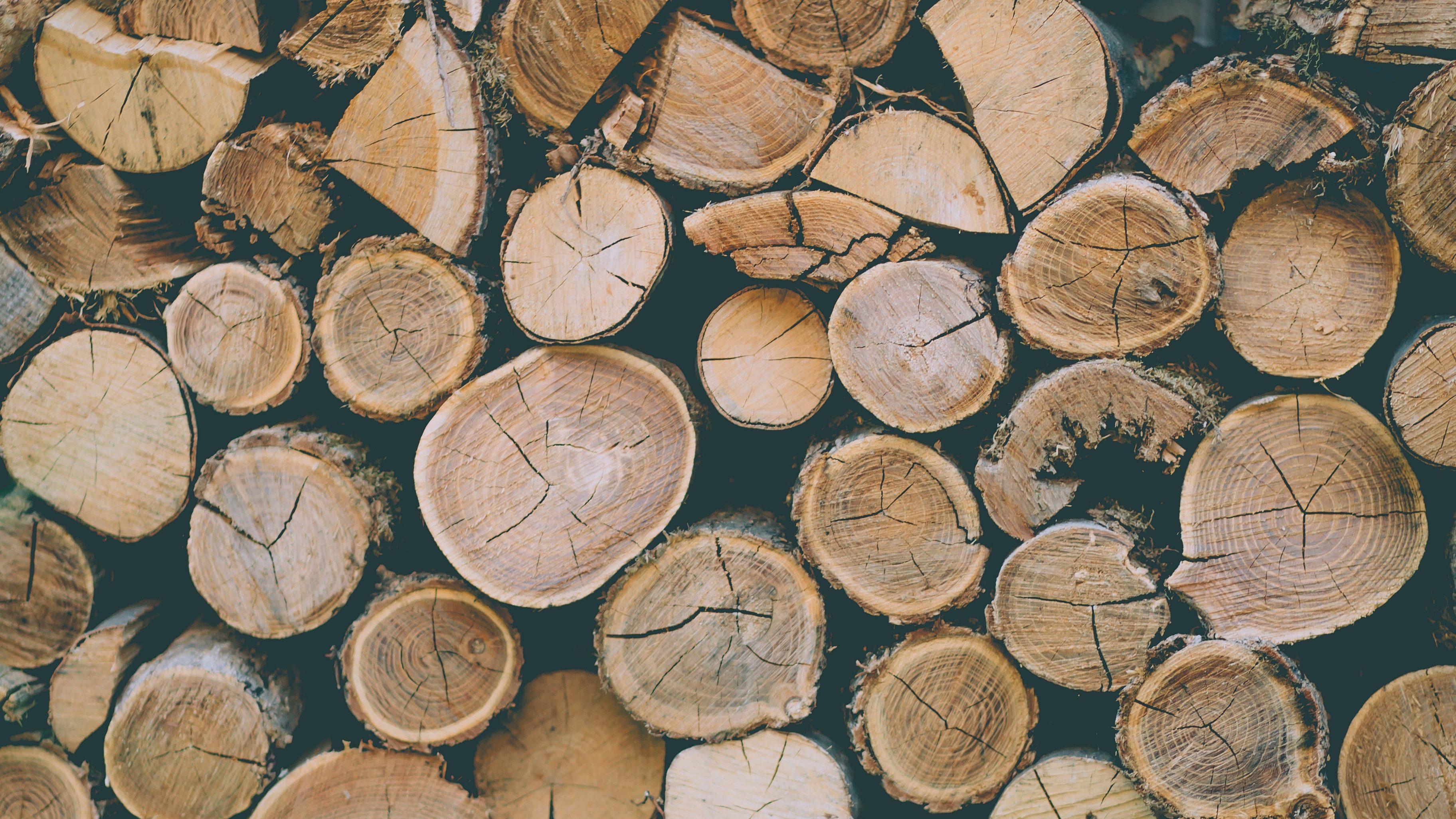vente de bois à brumath