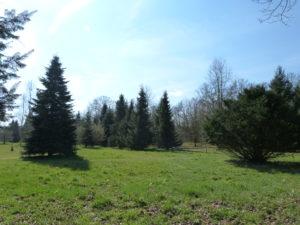 L'arboretum à Brumath.